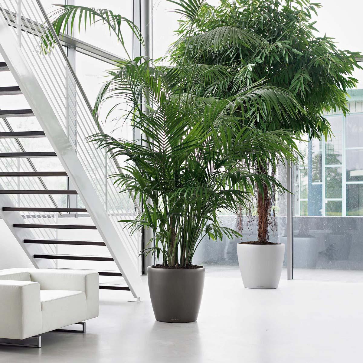 Vasi Per Piante Da Terrazzo vasi e contenitori per piante da interno ed esterno - vasi