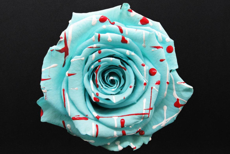 rose naturali stabilizzate