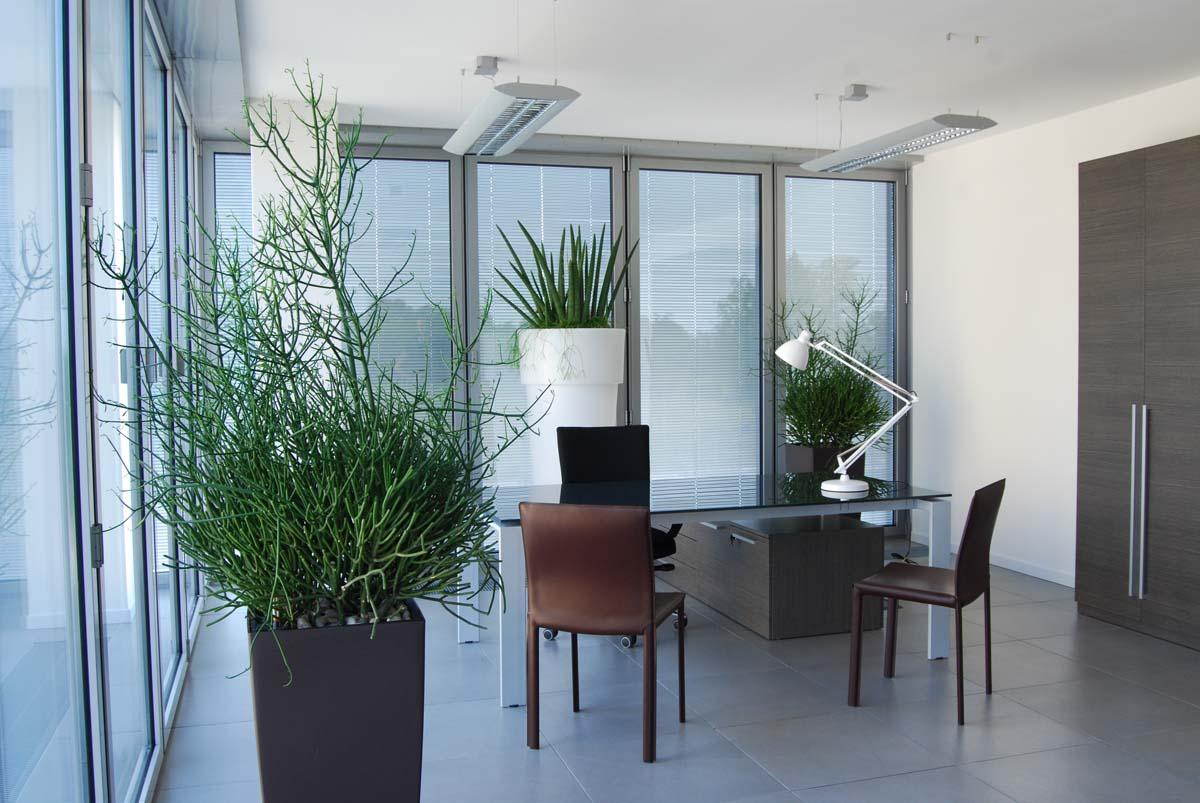 arredo verde uffici