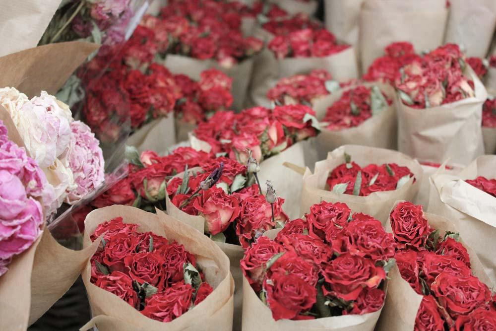 rose rosse natale